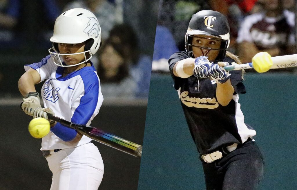 Different ages will suitable for different types of fastpitch bat