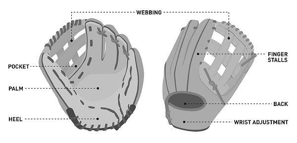 best youth softball gloves scottfujita 1